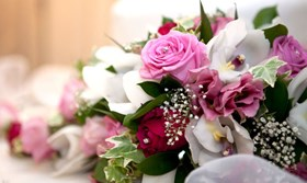 close up of pink and white flowers on the wedding top table